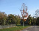 Tennis courts in Leakin Park